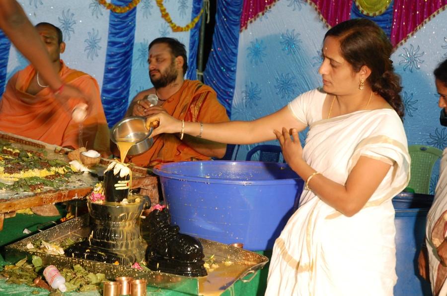 Maha Shivratri Special Maha Pasupatha Homam 2014 (256)