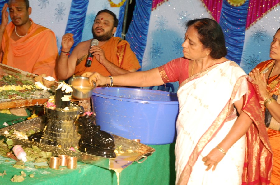 Maha Shivratri Special Maha Pasupatha Homam 2014 (257)