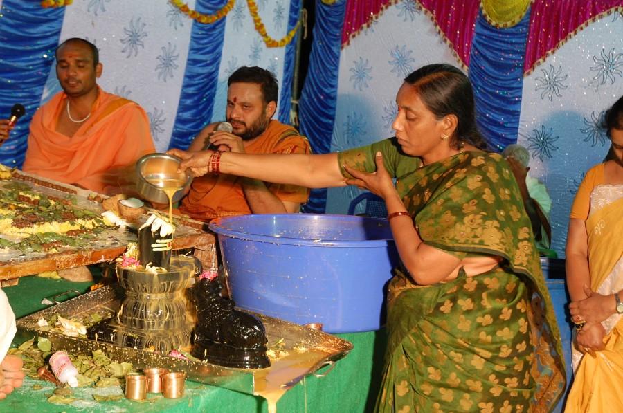 Maha Shivratri Special Maha Pasupatha Homam 2014 (260)
