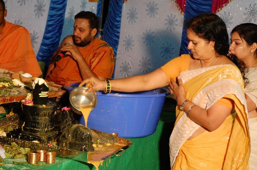 Maha Shivratri Special Maha Pasupatha Homam 2014 (261)