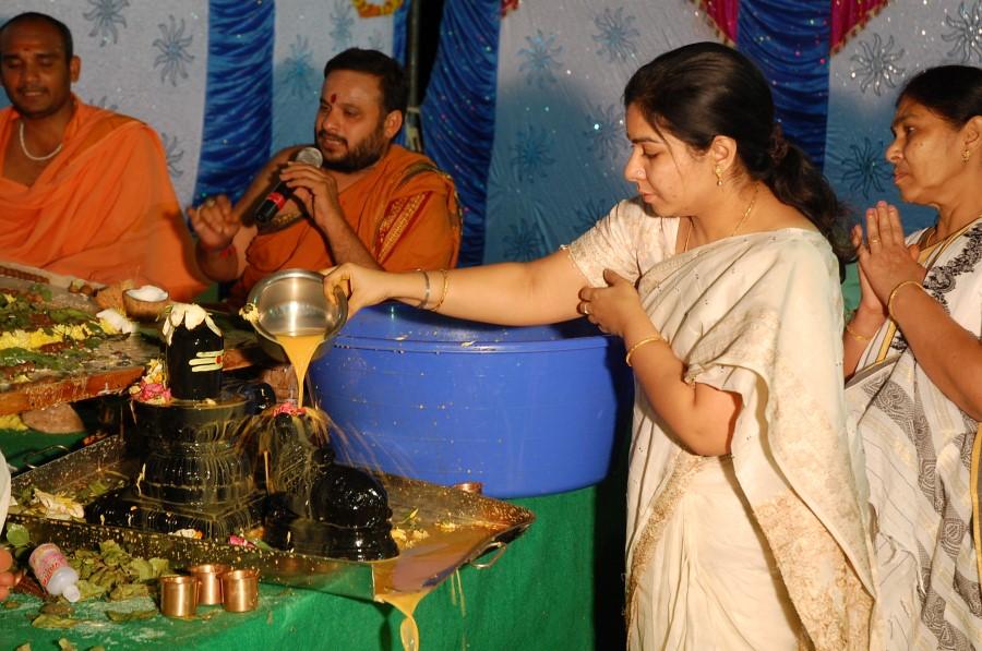 Maha Shivratri Special Maha Pasupatha Homam 2014 (262)