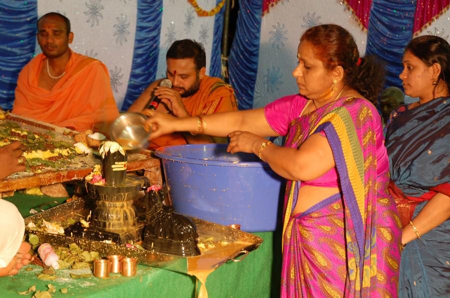 Maha Shivratri Special Maha Pasupatha Homam 2014 (264)
