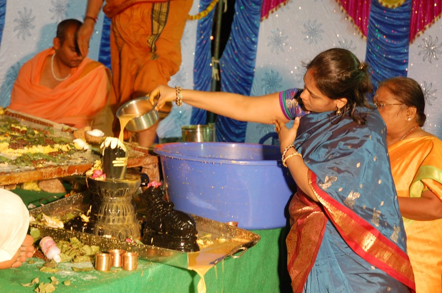 Maha Shivratri Special Maha Pasupatha Homam 2014 (265)