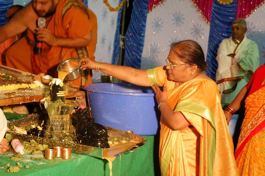 Maha Shivratri Special Maha Pasupatha Homam 2014 (266)