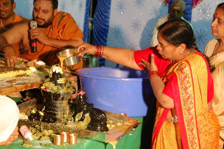 Maha Shivratri Special Maha Pasupatha Homam 2014 (267)