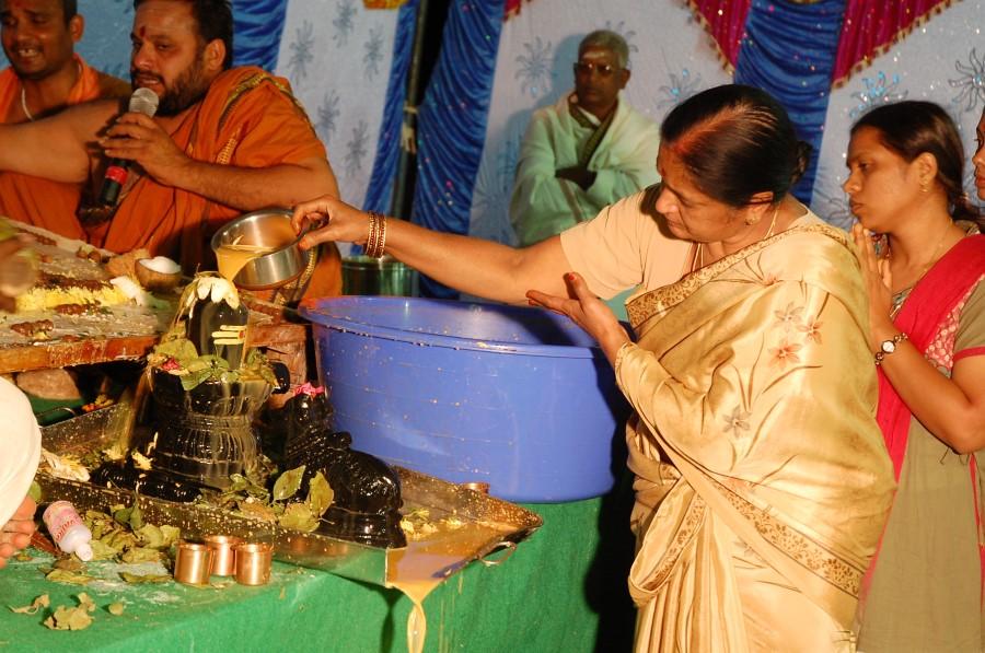 Maha Shivratri Special Maha Pasupatha Homam 2014 (268)