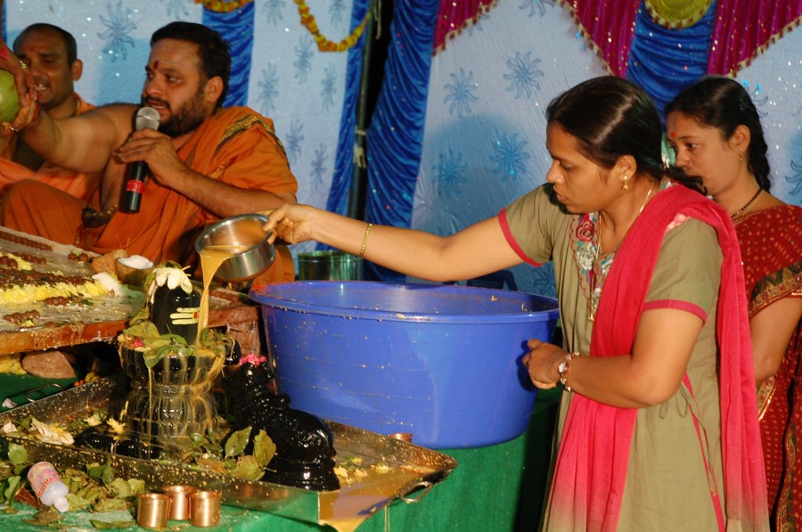 Maha Shivratri Special Maha Pasupatha Homam 2014 (269)