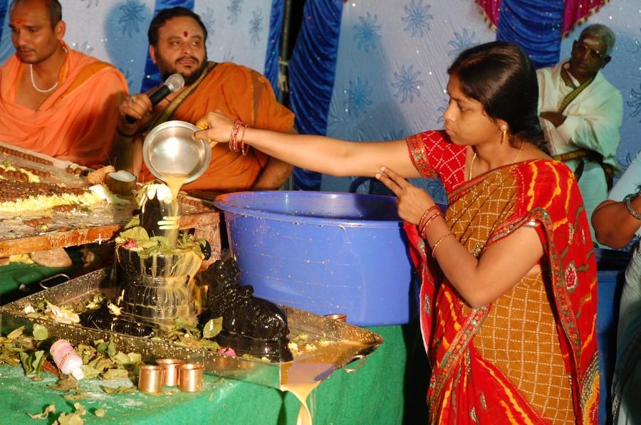 Maha Shivratri Special Maha Pasupatha Homam 2014 (271)