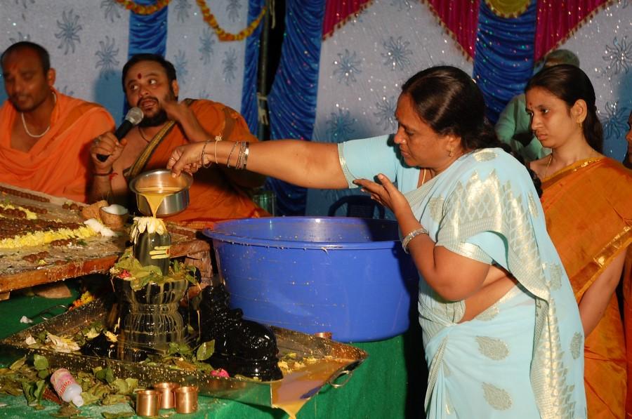 Maha Shivratri Special Maha Pasupatha Homam 2014 (273)