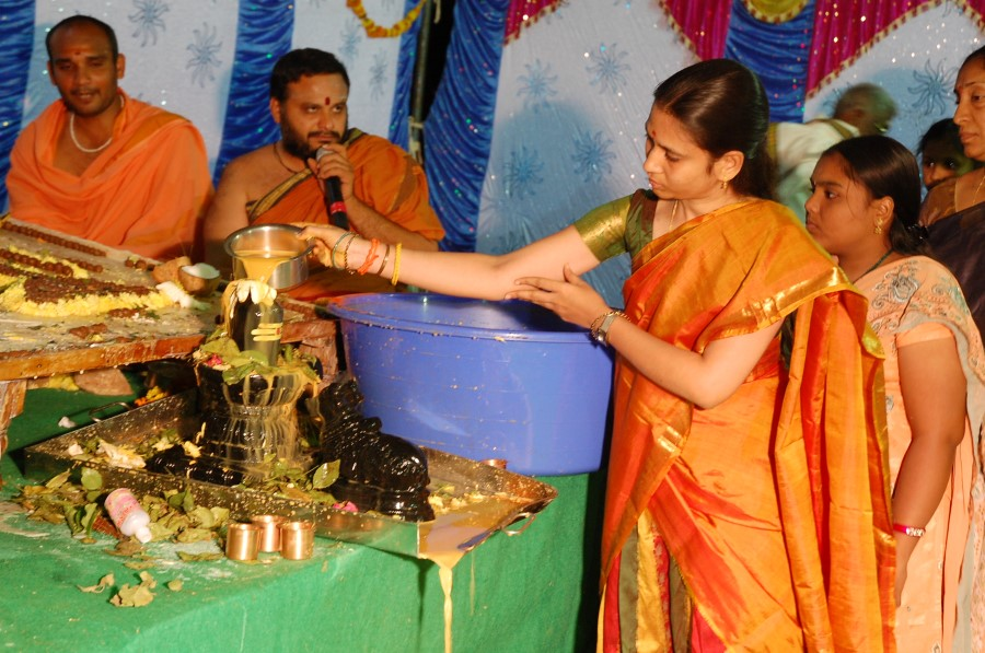 Maha Shivratri Special Maha Pasupatha Homam 2014 (274)
