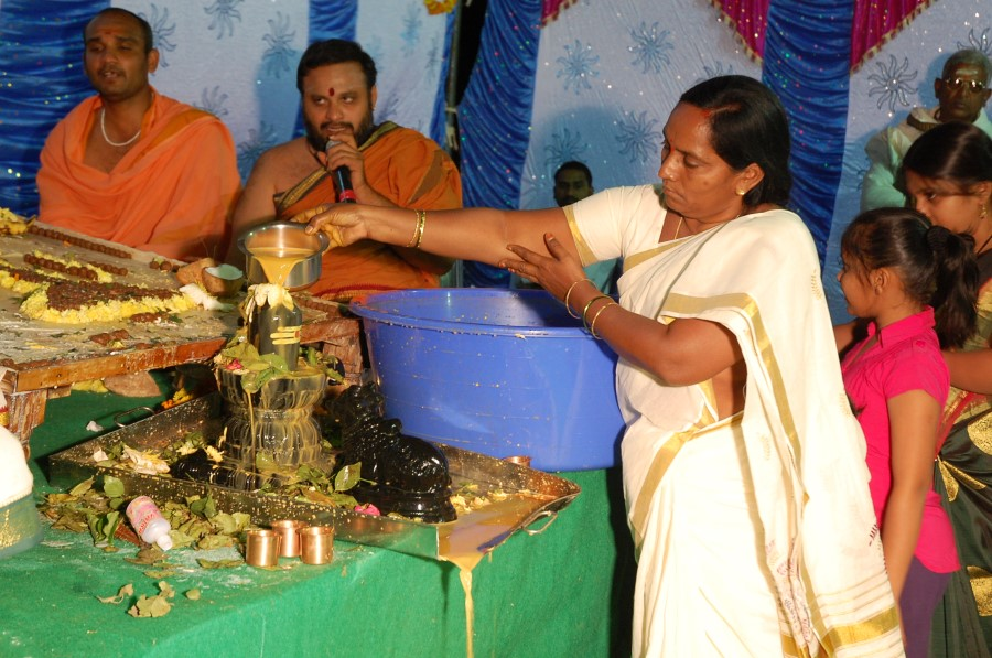 Maha Shivratri Special Maha Pasupatha Homam 2014 (277)