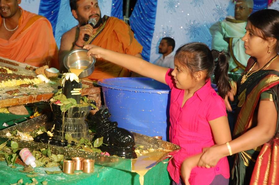 Maha Shivratri Special Maha Pasupatha Homam 2014 (278)