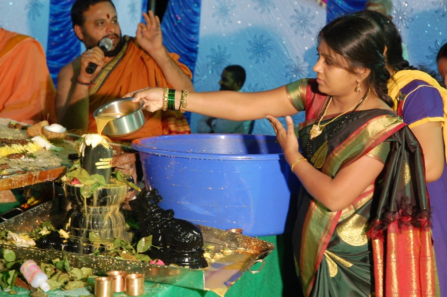 Maha Shivratri Special Maha Pasupatha Homam 2014 (279)