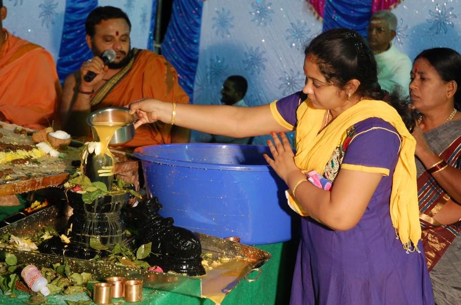 Maha Shivratri Special Maha Pasupatha Homam 2014 (280)