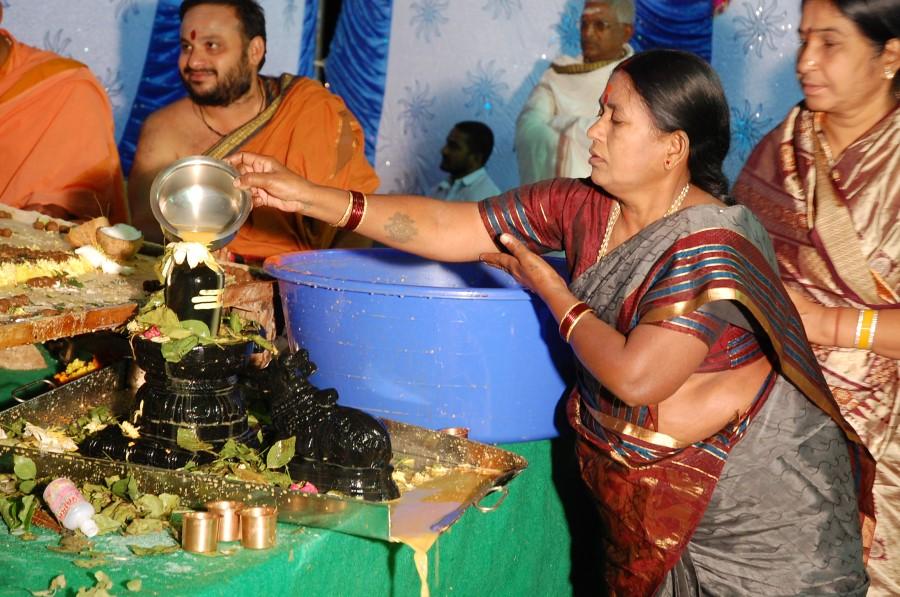 Maha Shivratri Special Maha Pasupatha Homam 2014 (281)