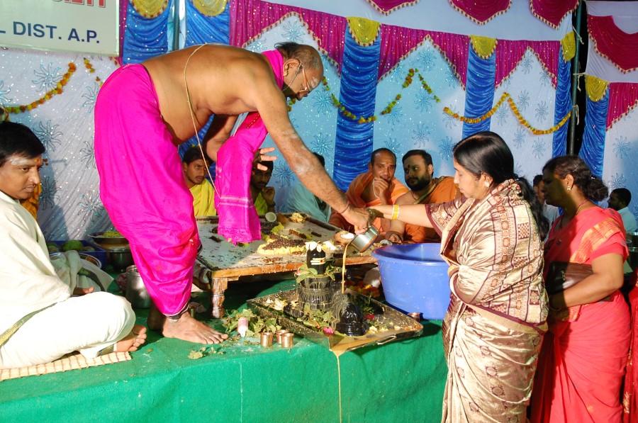 Maha Shivratri Special Maha Pasupatha Homam 2014 (282)