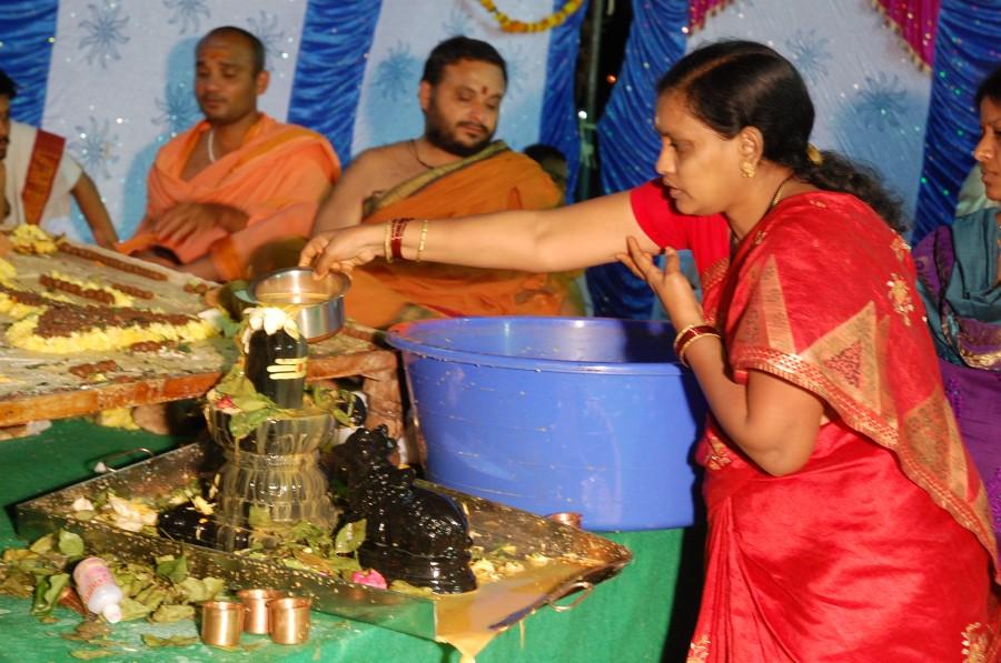 Maha Shivratri Special Maha Pasupatha Homam 2014 (284)