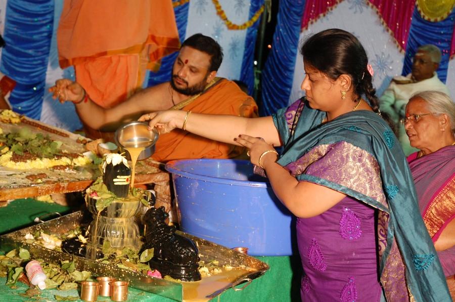 Maha Shivratri Special Maha Pasupatha Homam 2014 (285)