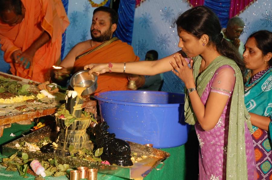 Maha Shivratri Special Maha Pasupatha Homam 2014 (288)
