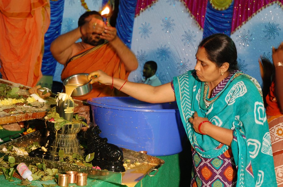 Maha Shivratri Special Maha Pasupatha Homam 2014 (289)