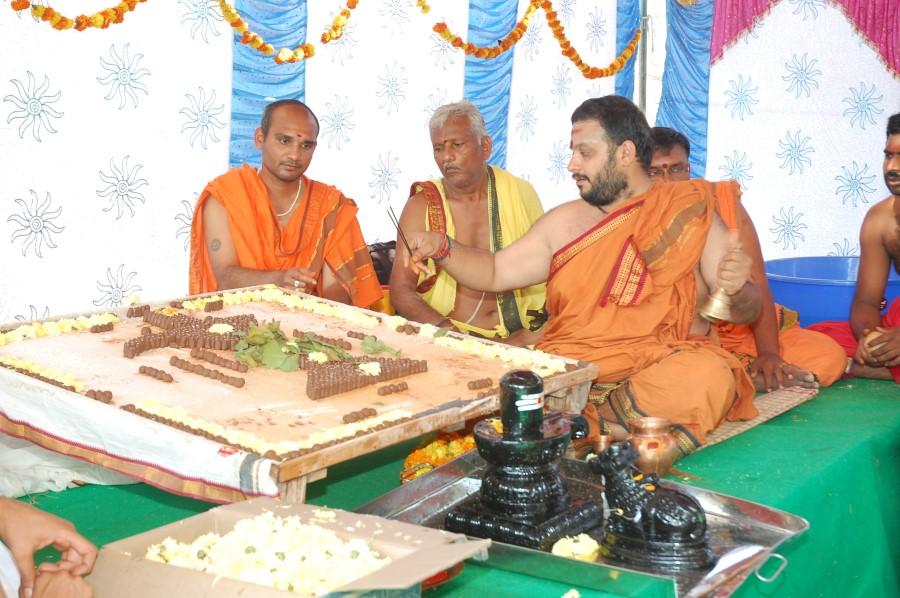 Maha Shivratri Special Maha Pasupatha Homam 2014 (29)