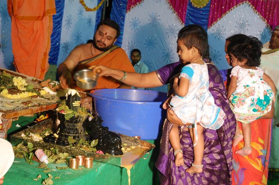 Maha Shivratri Special Maha Pasupatha Homam 2014 (291)