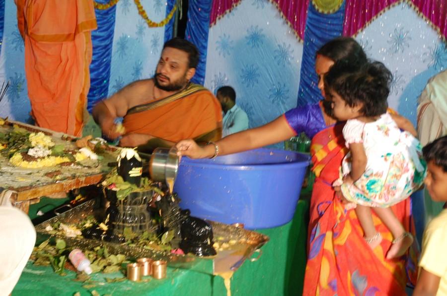 Maha Shivratri Special Maha Pasupatha Homam 2014 (292)
