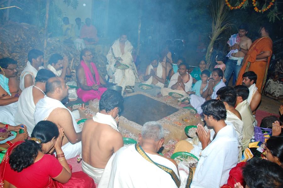 Maha Shivratri Special Maha Pasupatha Homam 2014 (296)