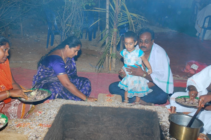 Maha Shivratri Special Maha Pasupatha Homam 2014 (300)