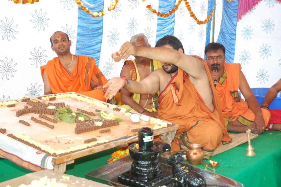 Maha Shivratri Special Maha Pasupatha Homam 2014 (31)