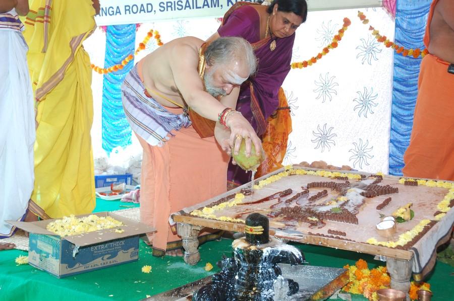 Maha Shivratri Special Maha Pasupatha Homam 2014 (41)