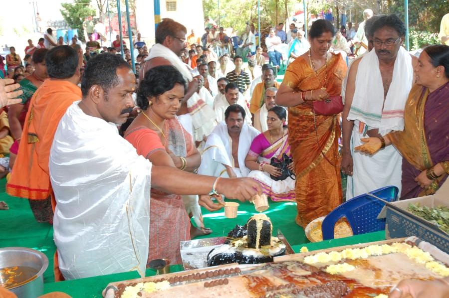 Maha Shivratri Special Maha Pasupatha Homam 2014 (45)