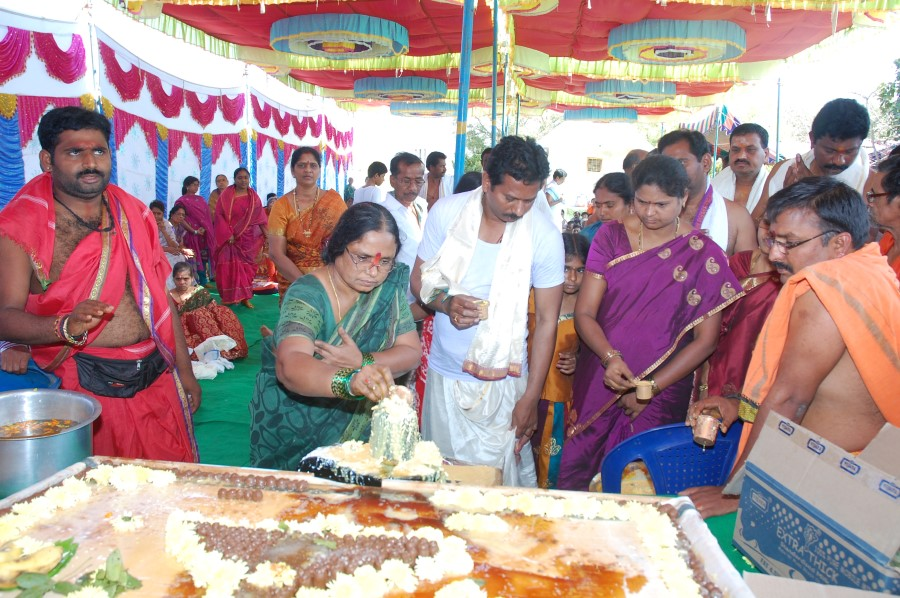 Maha Shivratri Special Maha Pasupatha Homam 2014 (53)