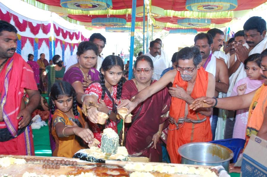 Maha Shivratri Special Maha Pasupatha Homam 2014 (55)