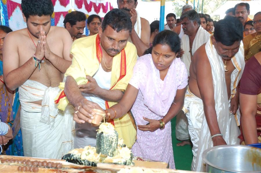 Maha Shivratri Special Maha Pasupatha Homam 2014 (60)