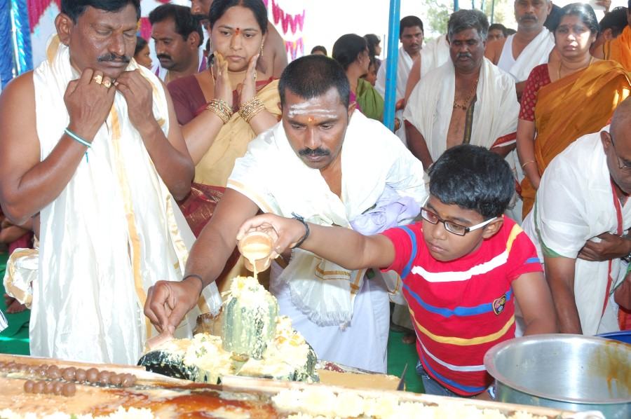 Maha Shivratri Special Maha Pasupatha Homam 2014 (62)