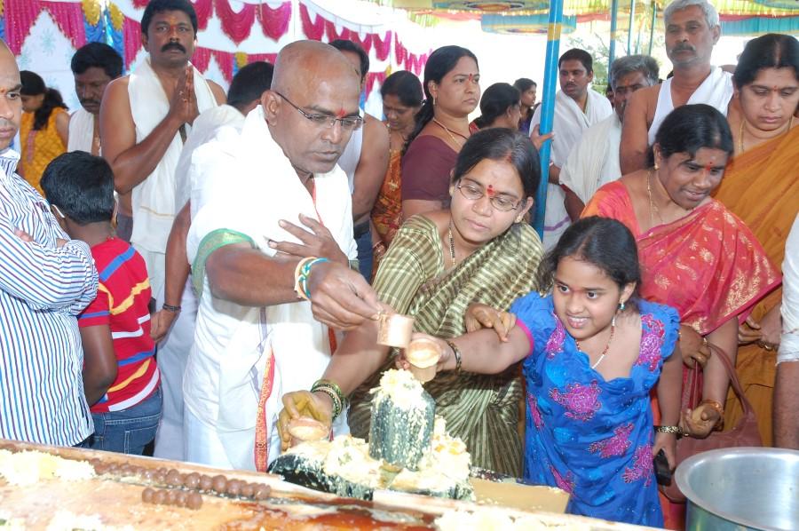 Maha Shivratri Special Maha Pasupatha Homam 2014 (63)