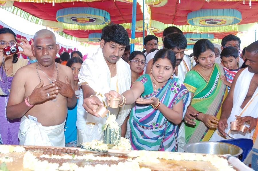 Maha Shivratri Special Maha Pasupatha Homam 2014 (74)