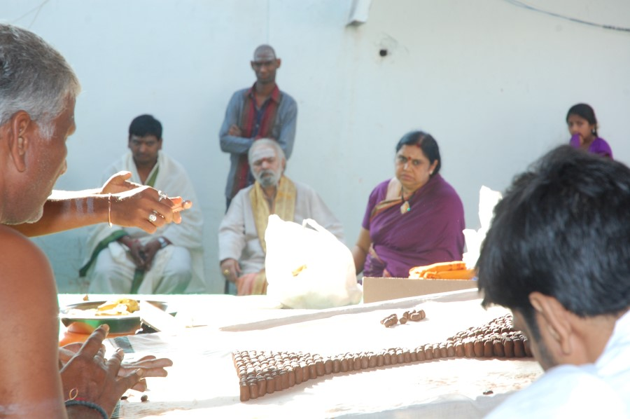 Maha Shivratri Special Maha Pasupatha Homam 2014 (8)