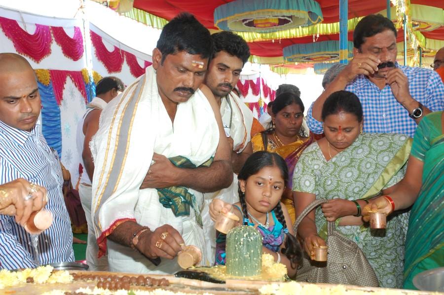 Maha Shivratri Special Maha Pasupatha Homam 2014 (99)