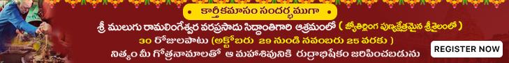 Karthika masam Special Abhishekam at Mulugu siddanthis Ashramam (srisailam)