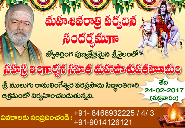 Maha Shivaratri Special Sahasra Lingarchana Sahitha Mahapasupatha Homam at  Siddanthi Ashramam (Srisailam).