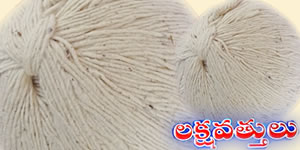 Karthikamasam Special Laksha Wicks (Vattulu) 5Paks